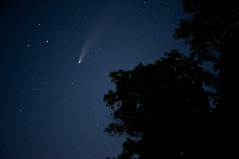 The comet in the top left of the photo with a small bright blur to the right of it. A tree takes up the bottom right of the photo.