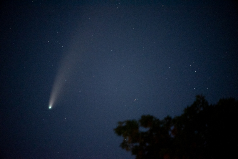The comet in the top left of the photo. A tree in the bottom right.