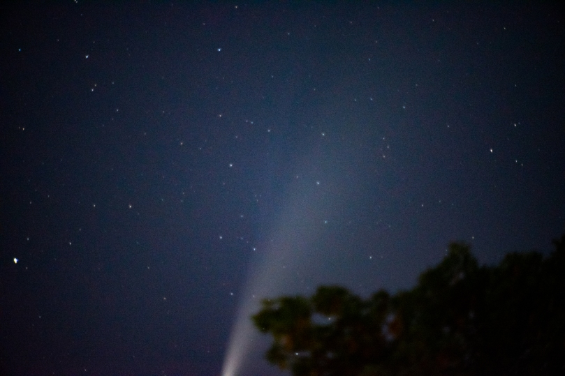 The comet tail coming up from the bottom of the photo. You can sort of see the ion tail too coming off the top.